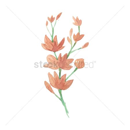 Stems : Watercolor flowers