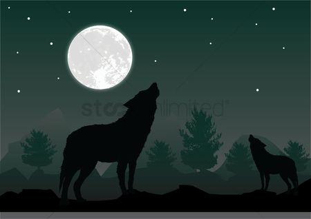 Moon : Wolf howling at the moon