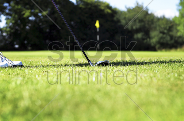 a golf club putting a golf ball into the hole stock photo