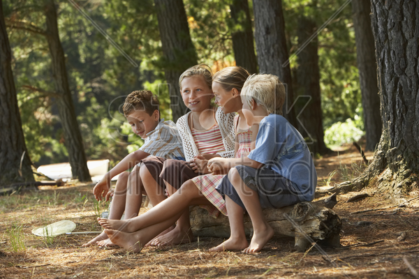 four children in forest stock photo