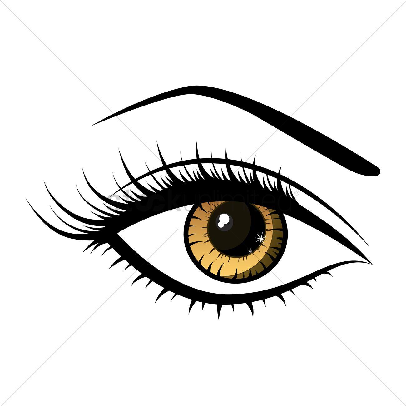 Beautiful female eye Vector Image - 1527506 | StockUnlimited