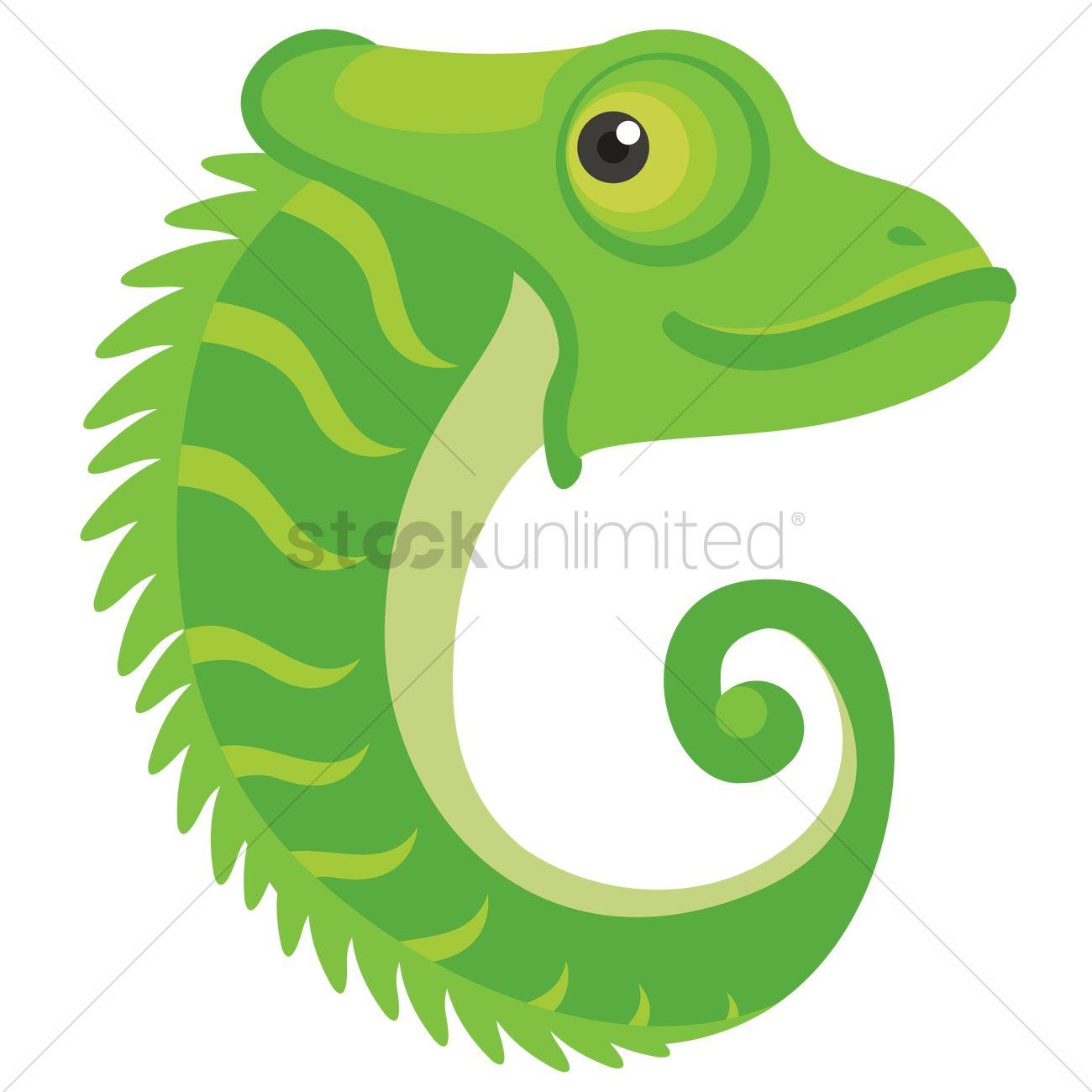letter c for chameleon vector image - 1236502 | stockunlimited