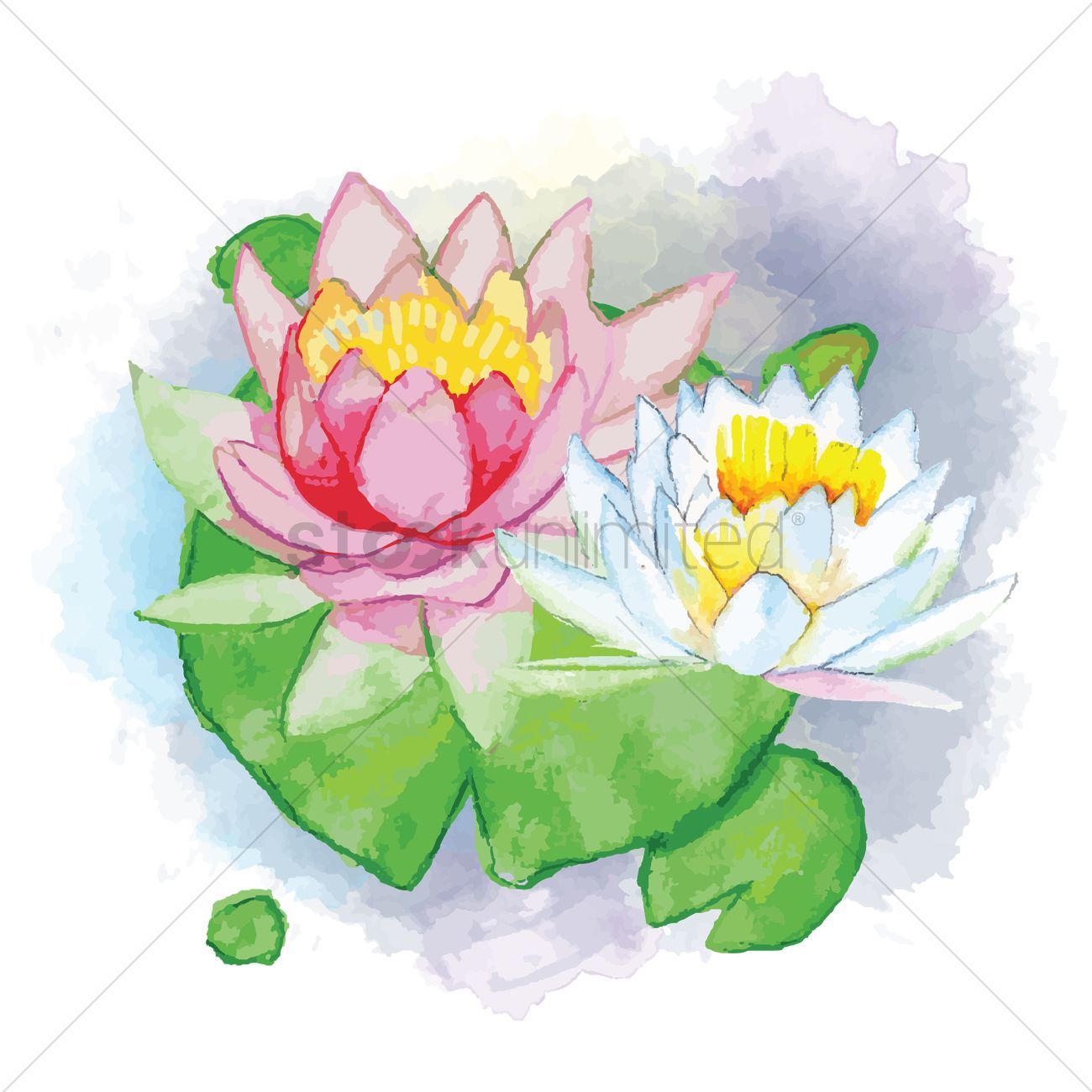 Lotus flower with leaf vector image 1869390 stockunlimited lotus flower with leaf vector graphic izmirmasajfo