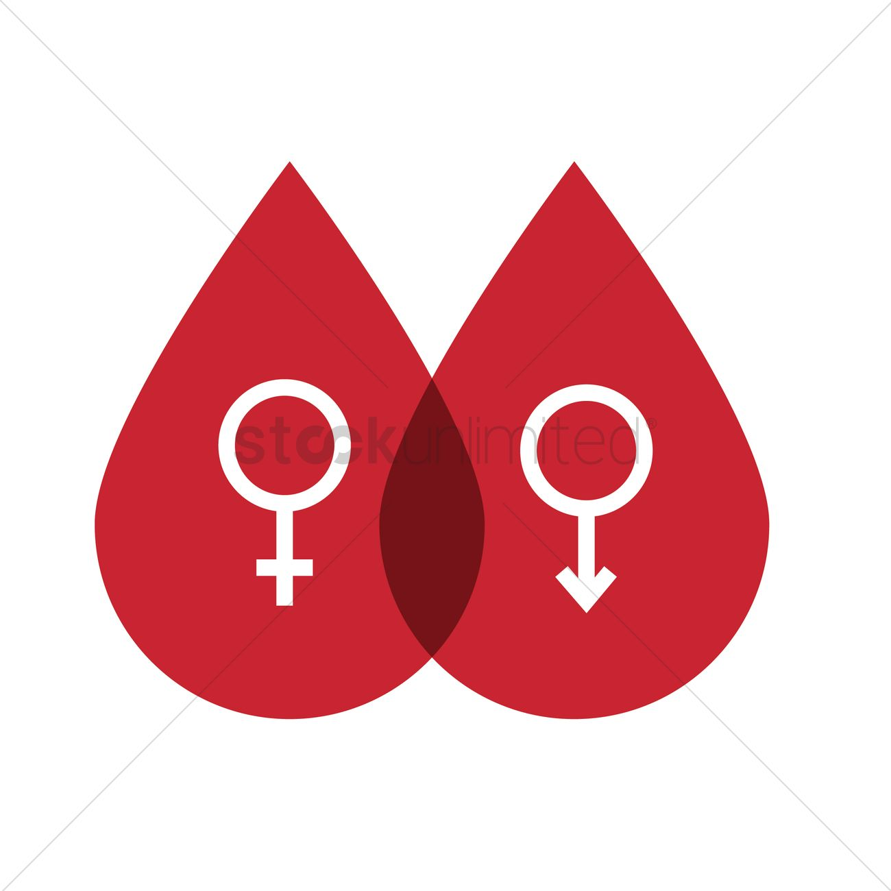 Male And Female Symbol In Blood Drops Vector Image 1499014