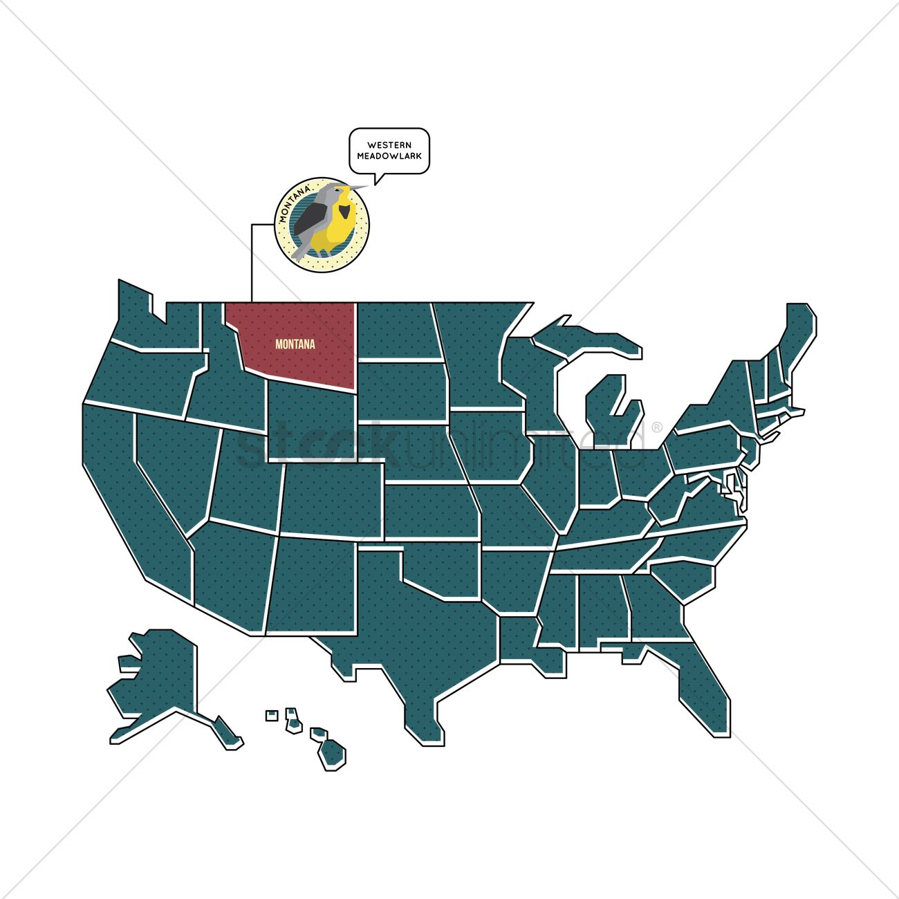 Us map with montana state bird Vector Image 1567442 StockUnlimited