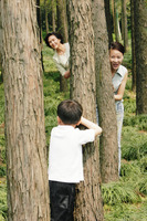 A boy playing hide and seek with his mother and grandmother in the forest