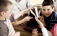 Children looking at a bear model