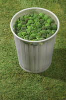 Dustbin filled with broccoli