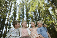 Four children  7-9  sitting in forest low angle view