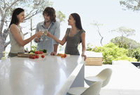 Friends socialising toasting at end of outdoor counter at dinner party