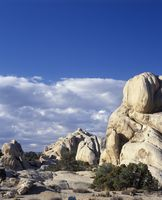Joshua tree national park california   monzogranite rock formation
