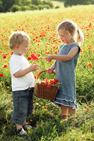Little girl giving flower to boy