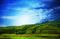 Lush  green landscape with blue sky and clouds