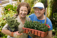 Senior couple gardening  portrait