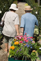 Senior couple walking in plant nursery pulling cart of flowers back view