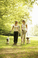 Women and their dogs walking taking a stroll in the park