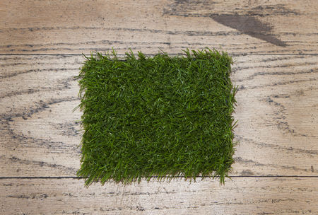 Grass background : Artificial grass close up