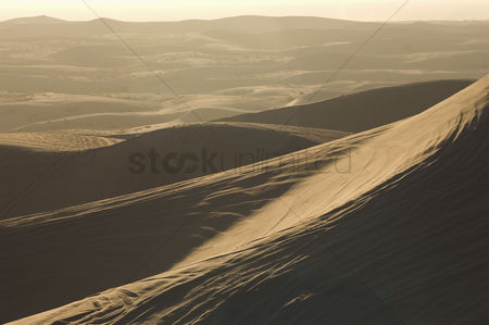 Land : Atv tracks on sand dunes
