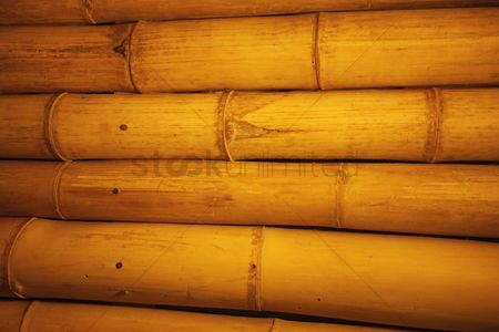 Ideas : Bamboo wall