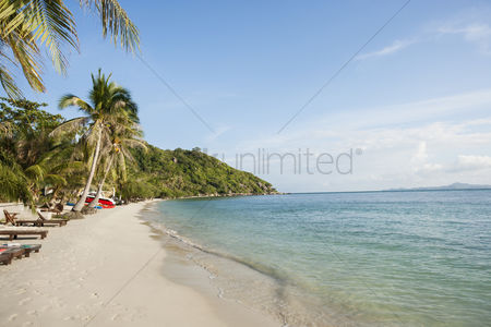 Travel : Beach and palm trees on koh pha ngan thailand