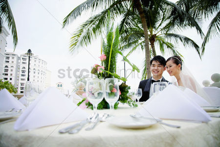 Elegance : Bride and groom at their wedding reception