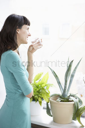 Houseplant : Businesswoman smiling drinking and looking through window by pot plant