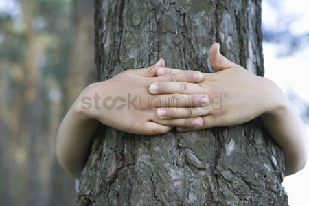 Finger : Child with arms around tree trunk