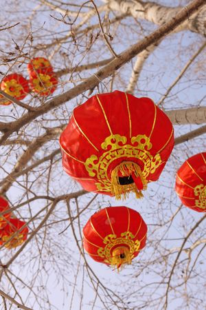 China : Chinese lanterns hanging on tree