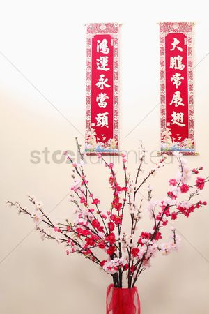 Blossom : Chinese new year banners with auspicious idioms