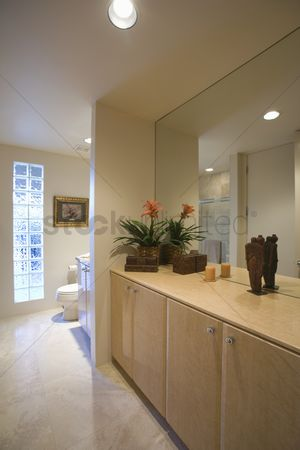 Houseplant : Cupboard storage and large mirror with glass bricks in palm springs bathroom