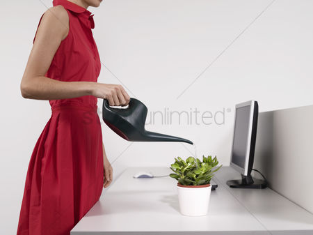 Houseplant : Female office worker watering desk plant