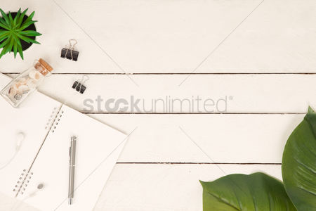 Notebook : Flatlay of white background with plants and seashells