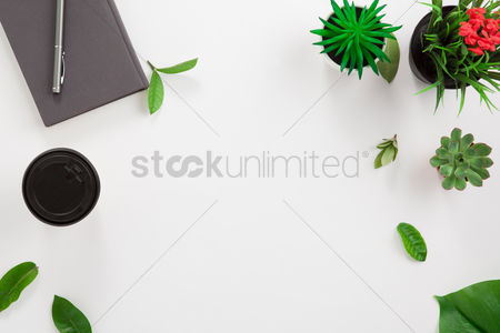 Blank : Flatlay of white background with plants