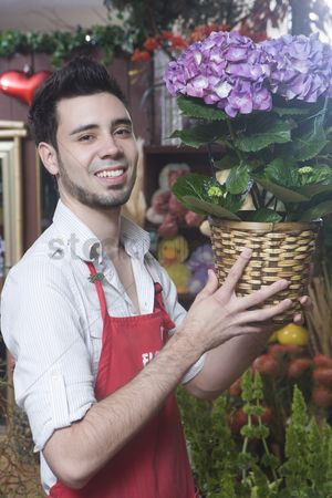 Houseplant : Florist stands with hydrangea