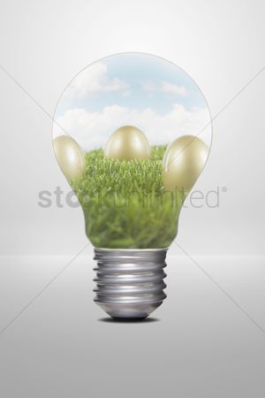 Grass background : Golden eggs placed on grass  inside a light bulb