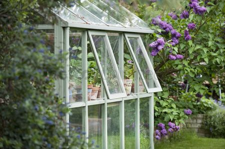 England : Greenhouse in back garden with open windows for ventilation