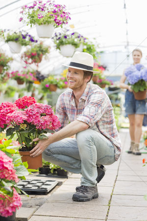 Greenhouse : Happy male gardener holding flower pot with colleague standing in background at greenhouse