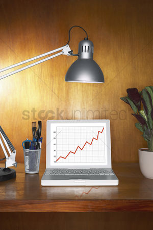 Houseplant : Laptop showing graph and other items on desk