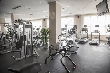Workout : Large  bright gym with workout equipment