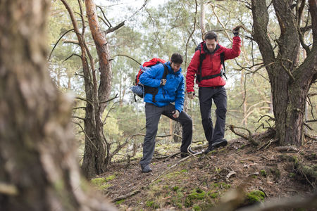 Jacket : Male backpackers hiking in forest