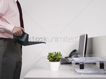 Houseplant : Male office worker watering desk plant