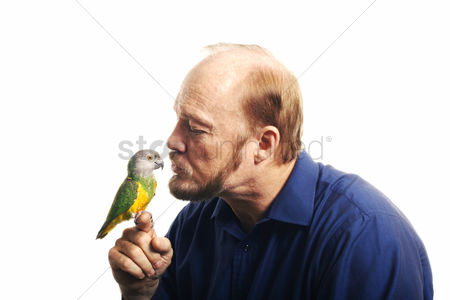 Kissing : Man kissing bird