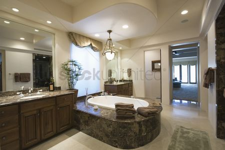 Houseplant : Marble bath with surround in palm springs home
