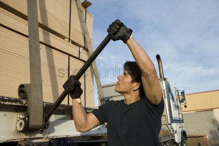 Truck : Mid-adult man adjusting strapping  of truck loaded with wood