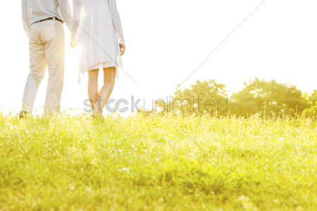 Grass : Midsection rear view of couple holding hands while standing on grass against sky