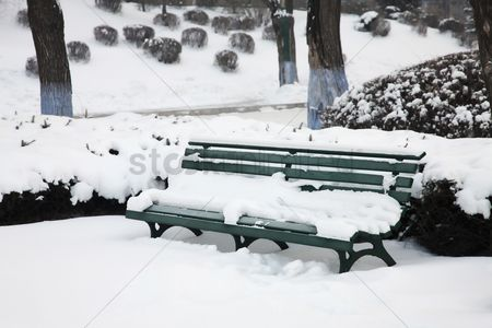 Cold temperature : Park bench during winter