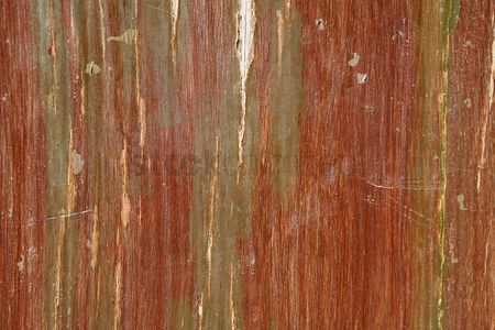 Weathered : Peeling wood surface