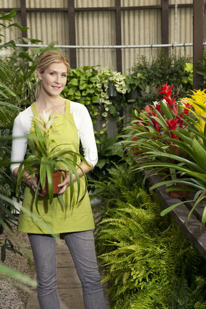 Greenhouse : Portrait of a happy young woman standing with potted plant in greenhouse