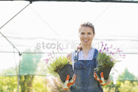Greenhouse : Portrait of confident gardener holding potted plants at greenhouse