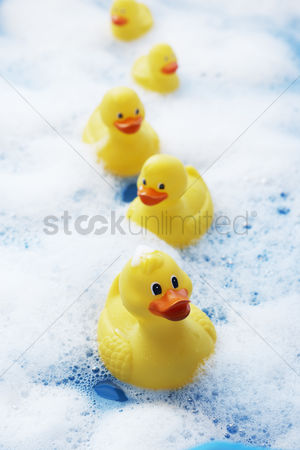 Leadership : Row of rubber ducks in bubble bath elevated view close-up